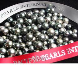 New Pacific Pearls 11.5mm Tahitian Black Pearl Pendant Necklace Christmas Gifts
