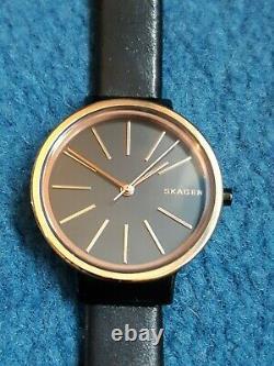 Skagen Ladies Watch Jewellery Gift Christmas Quartz Stainless Steel RRP £145